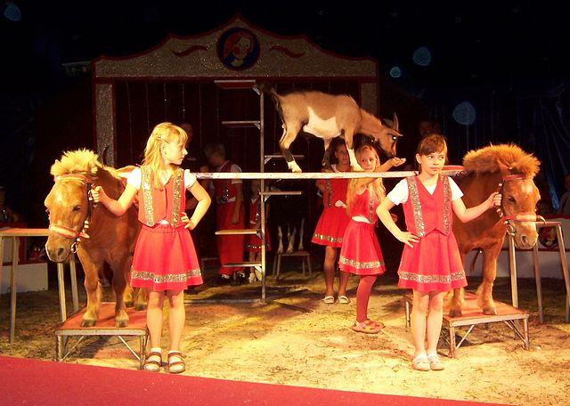 Zirkusfamilie Andre Sperlich